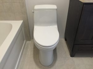 toto toilets are here to stay